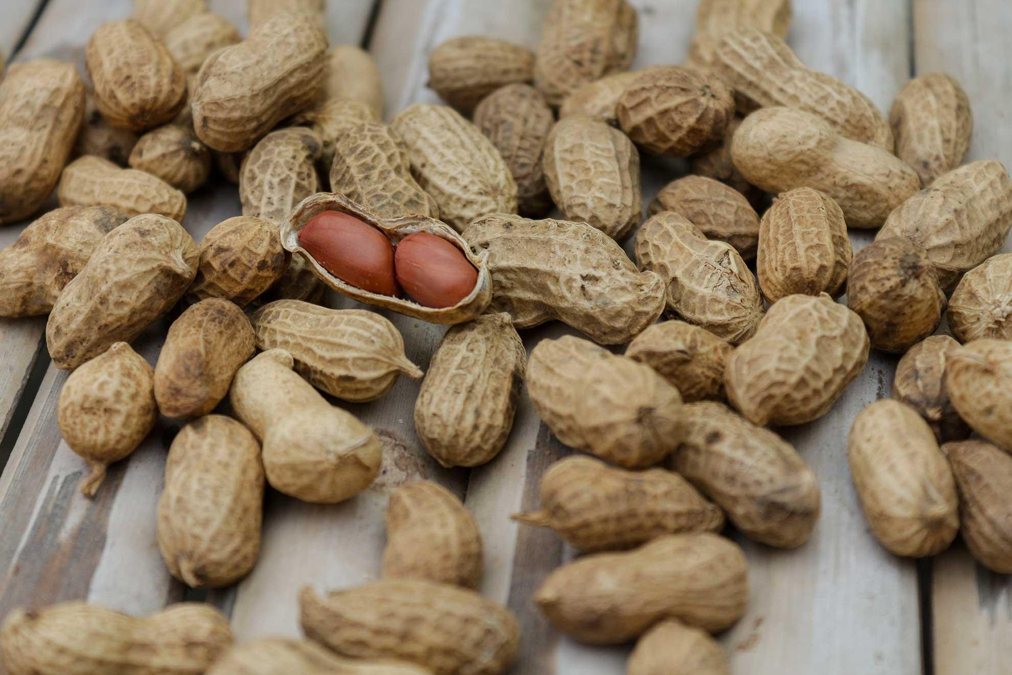 cara membuat donat coklat kacang