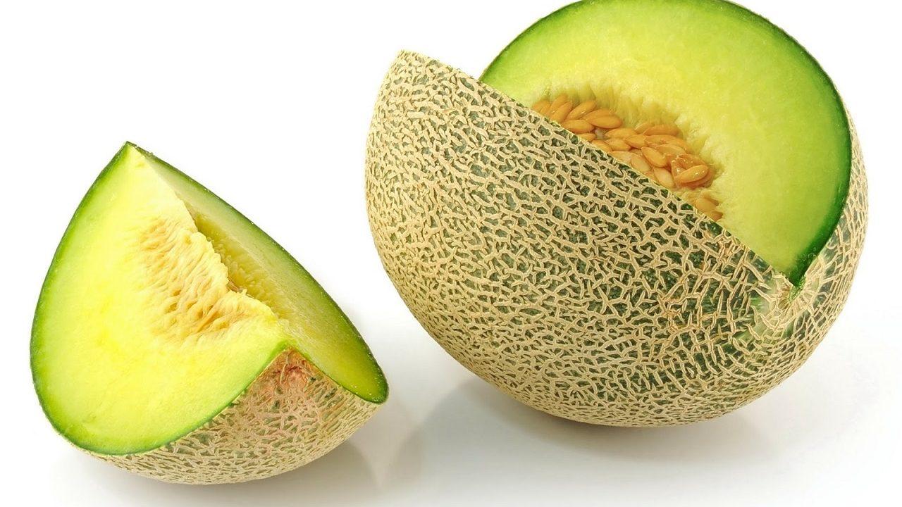 Dosis Pemupukan Melon