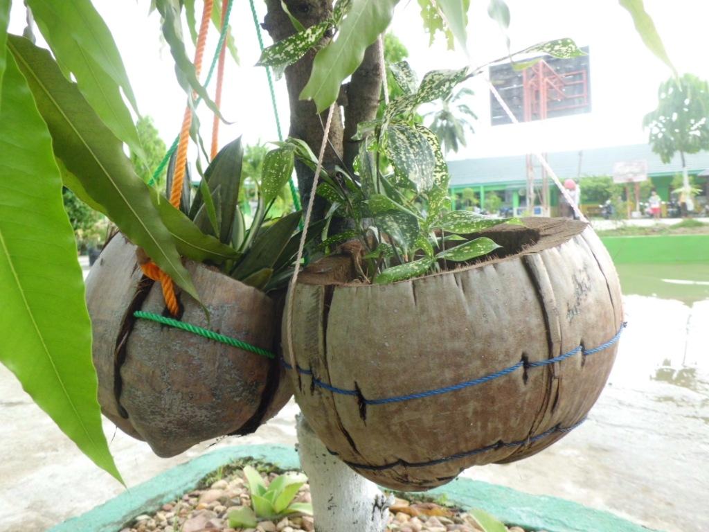 pot bunga dari sabut kelapa